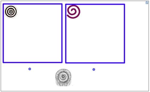 espiralesycirculos